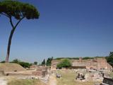 パラティーノの丘3