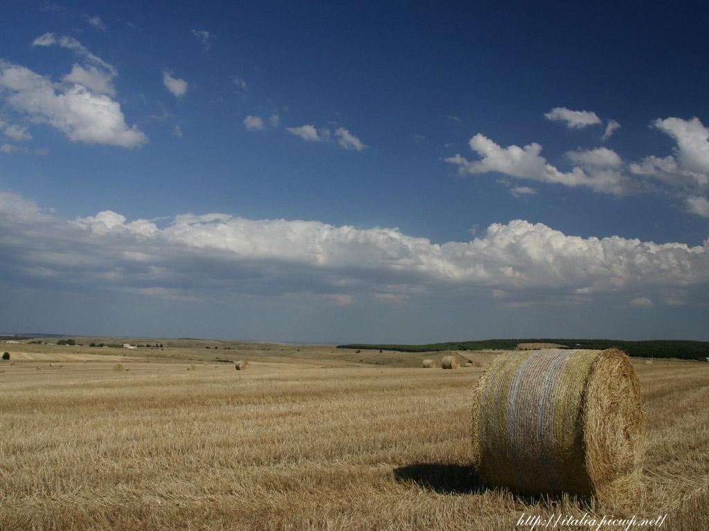畑とワラの束